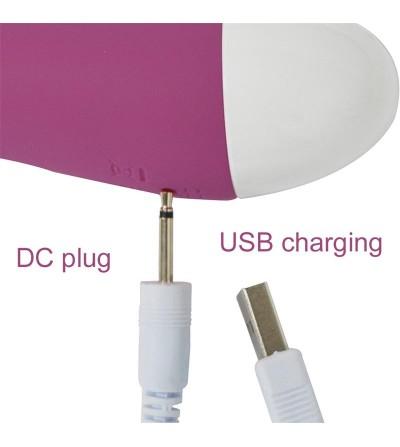 Bacall Vibrador Silicona Doble Motor USB Purpura